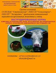 Комбикорма,  экструдированные корма,  смеси