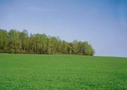 Продаю землю под строительство